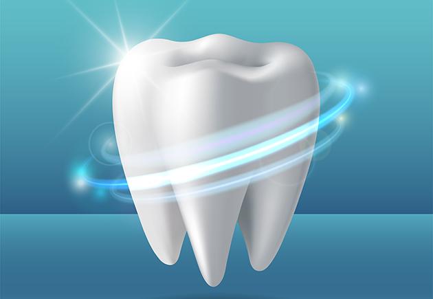 anatomia-dente